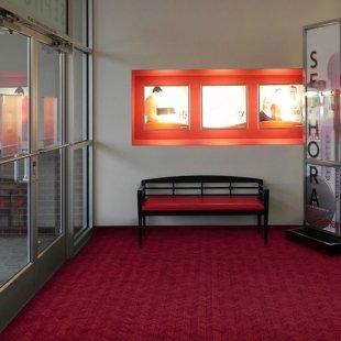 Eingangsmatte Swisslon Reinigungsmatte plus Meter
