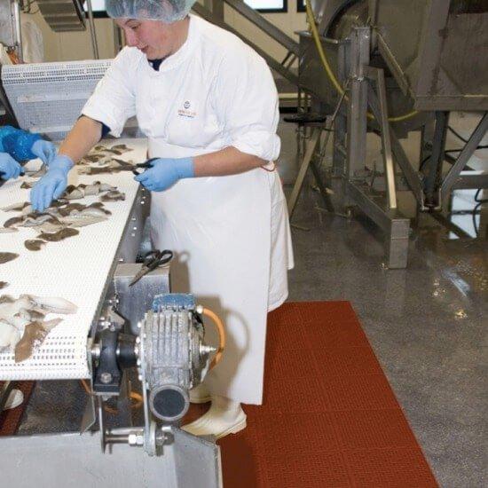 Wykładziny podłogowe dla przemysłu spożywczego i gastronomii